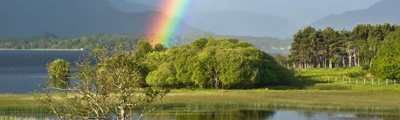 Killarney Rainbow