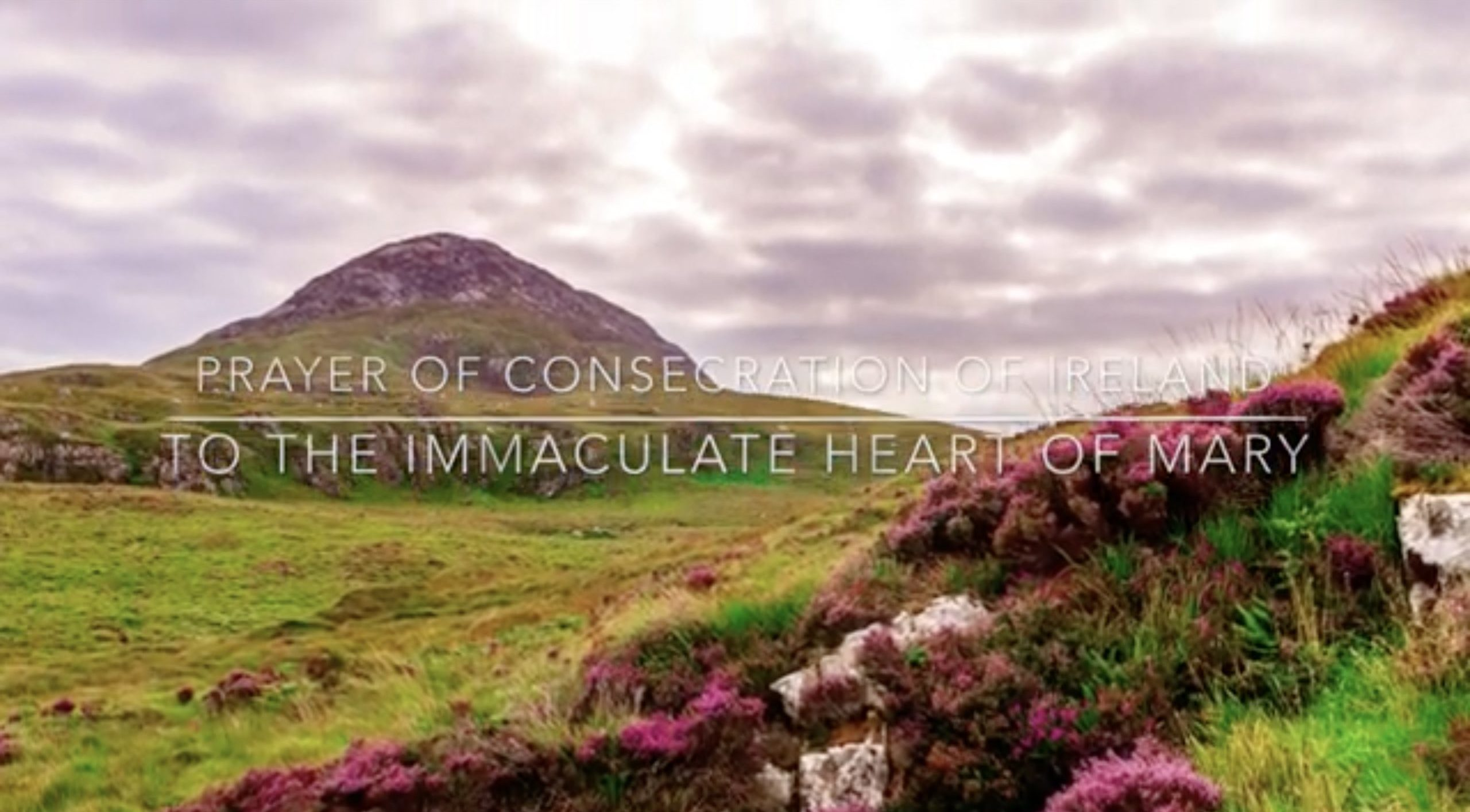 Consecrate Ireland to Immaculate Heart of Mary